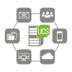 UCS with small business server functions