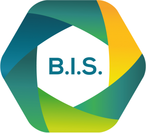 Logo of Business Integration Server
