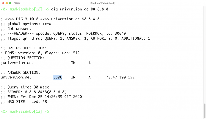 Screenshot of the answer section of a dig query