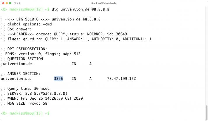 Screenshot der Answer-Section einer dig-Anfrage