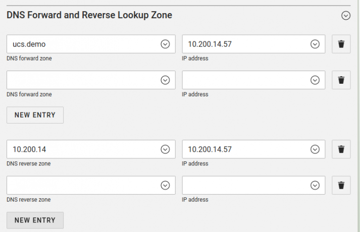 Screenshot of the forward- and reverse lookup zones in UCS